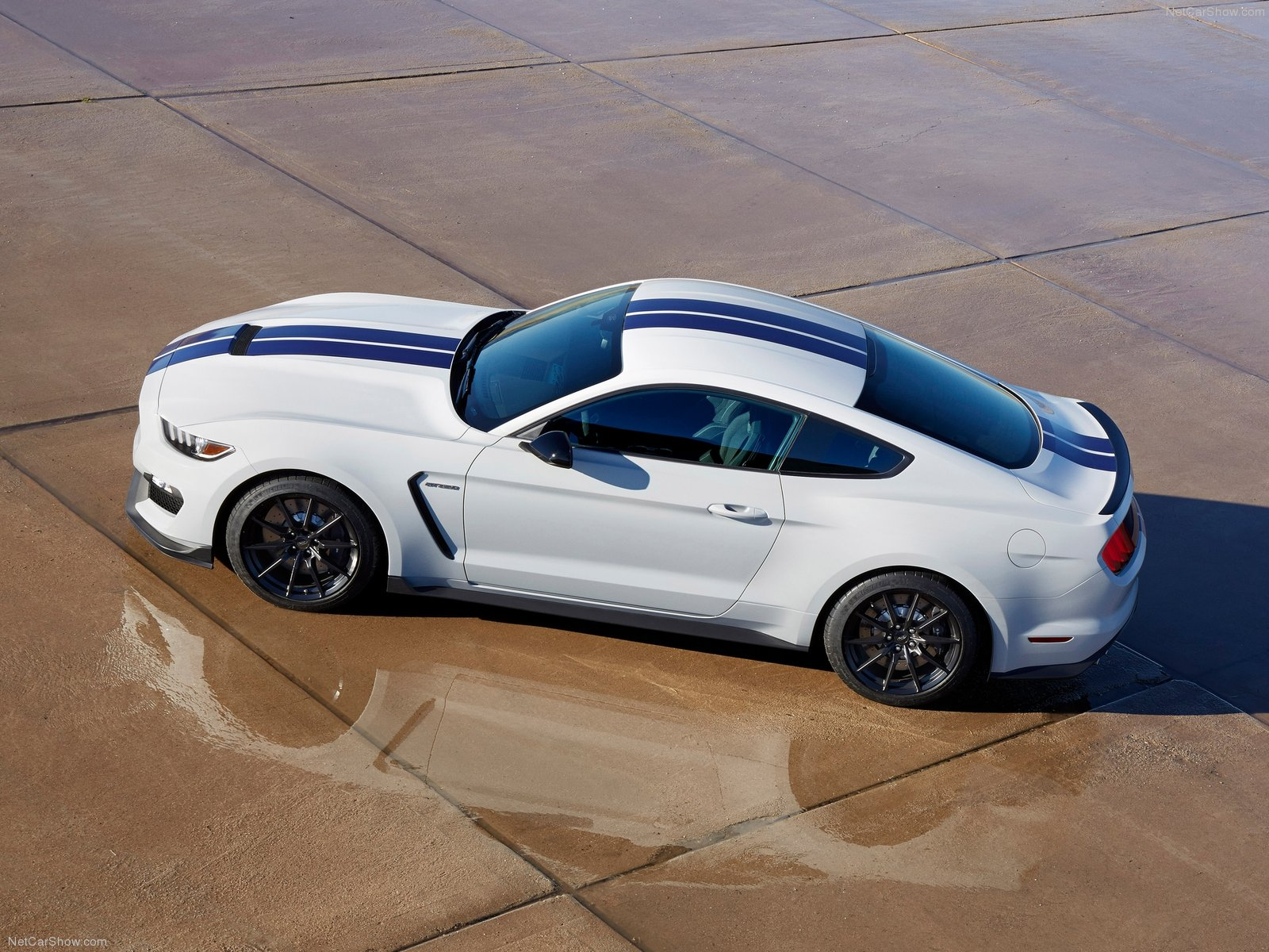 Ford-Mustang_Shelby_GT350_2016_1600x1200_wallpaper_06